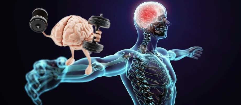 Muscle Memory MSK Sports Injury Clinic
